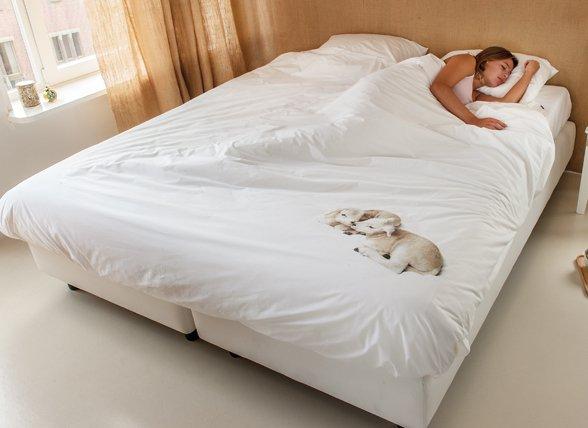 Snurk dekbedovertrek 100% Wool
